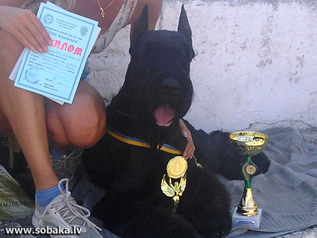 Севастополь. 