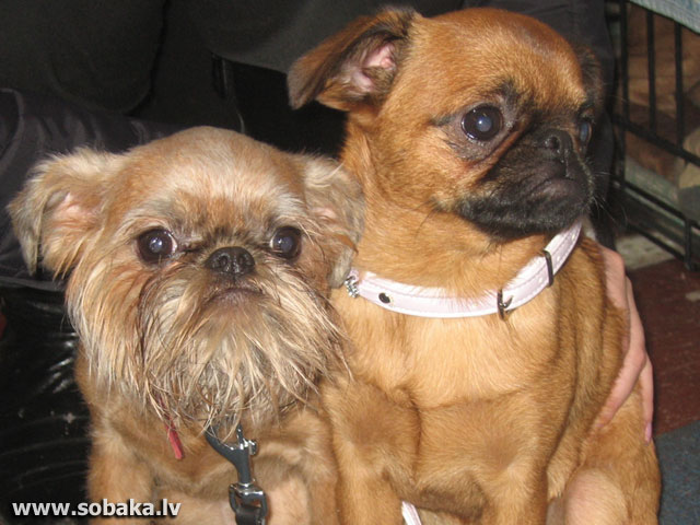 Дома с сестричкой. 