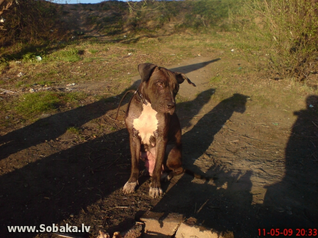 На природе. 