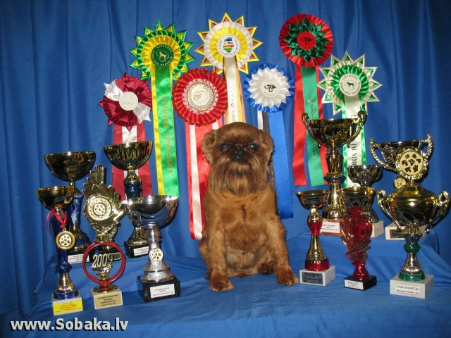 П-к «Европа Плюс». 