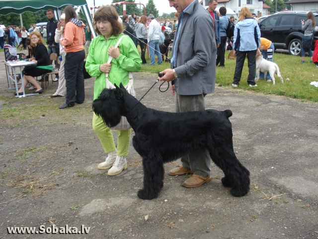 Луцк, 20.06.2009. 