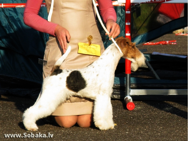 Семен. 