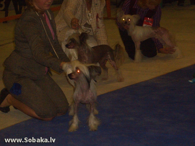 На выставке моно, он в середине. 