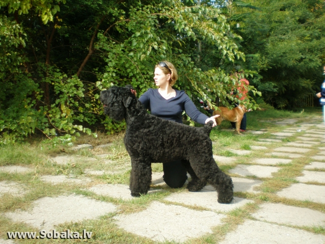 Одесса, Юг-Осень-2007. 