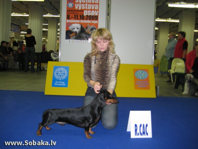 Чемпионат Мира, Братислава, 2009 г . 