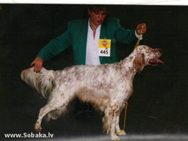 Флинт. 