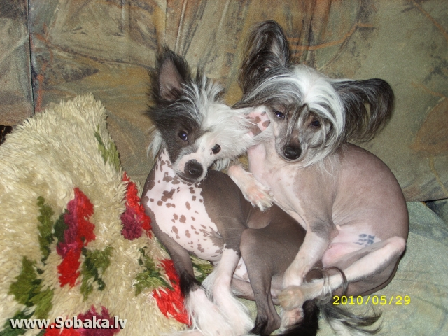 Жаклин с сыном. 