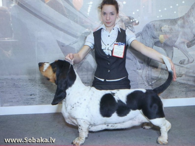Евразия. 