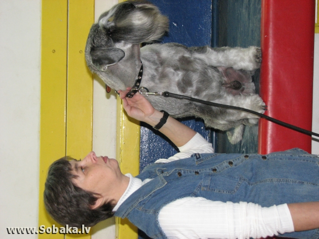 В Кфар Сабе.. 