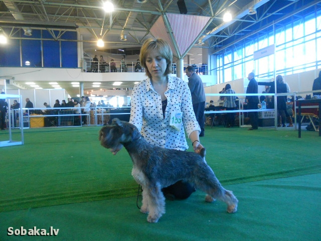 Альф на выставке в Кишиневе. 