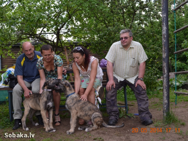 20.05.2014. 