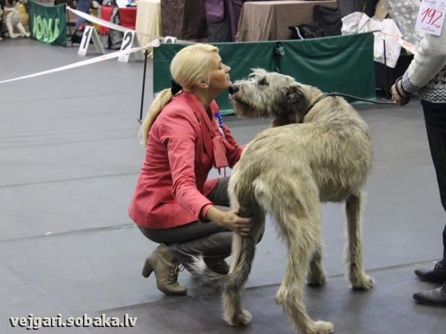 18.10.2014. 