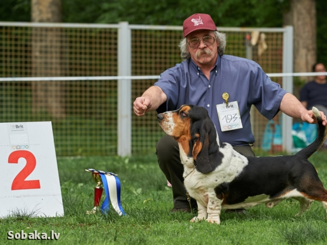 24.05.2015 RFOS Spring Cup, BIG-3. 
