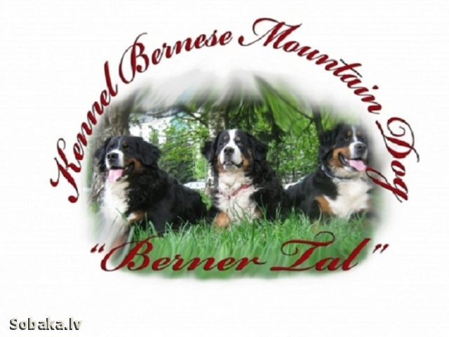 Эмблема питомника. 