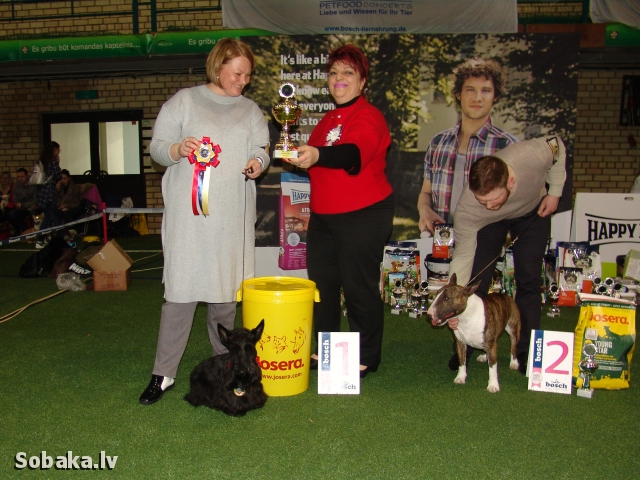 International Dog Show «Dog Planet» (CACIB). Armenian & German Championship