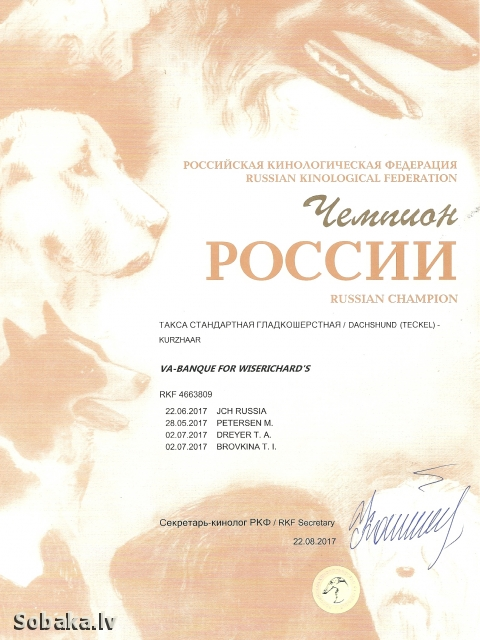 Teckel 