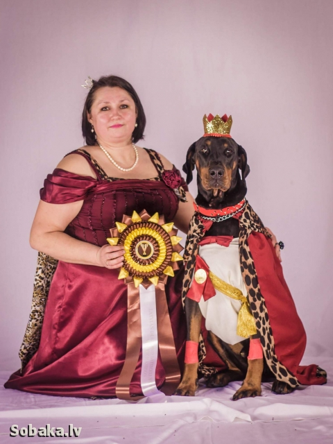 DOBERMANN => PHOTOS  